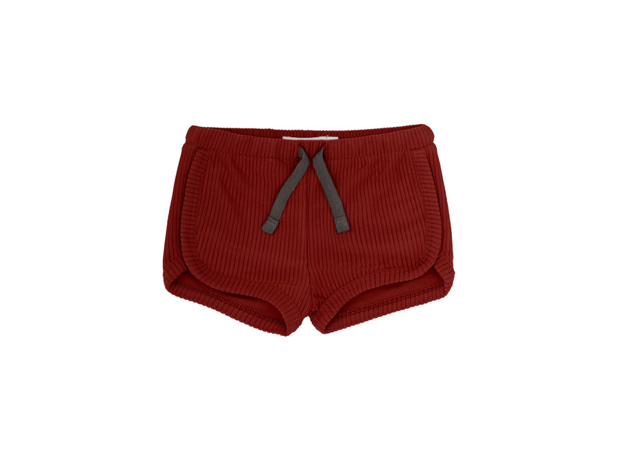Swim shorts deepest brick