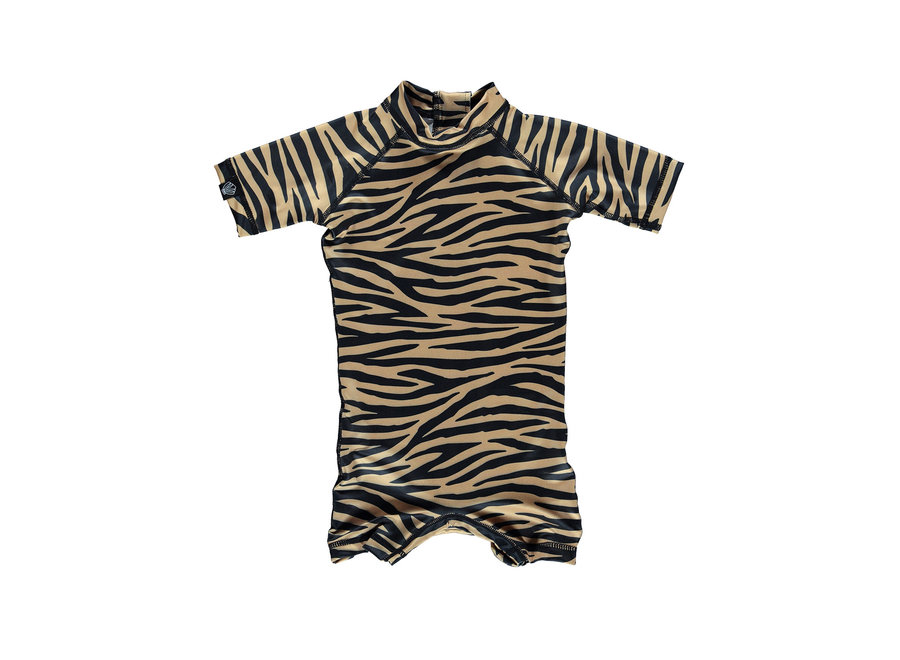 Tiger Shark Baby suit Cake