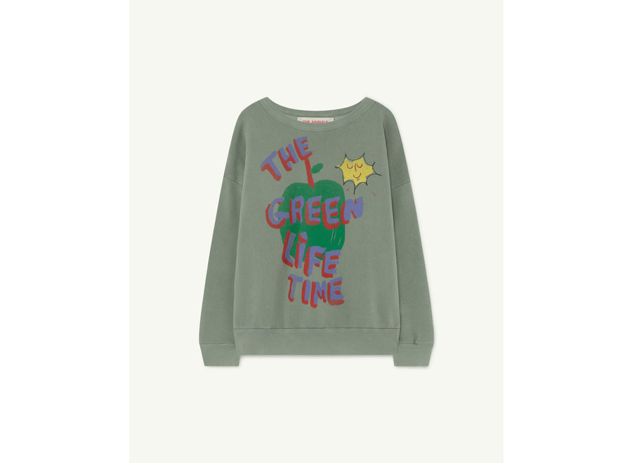 Big Bear Kids Sweater Soft Green Apple