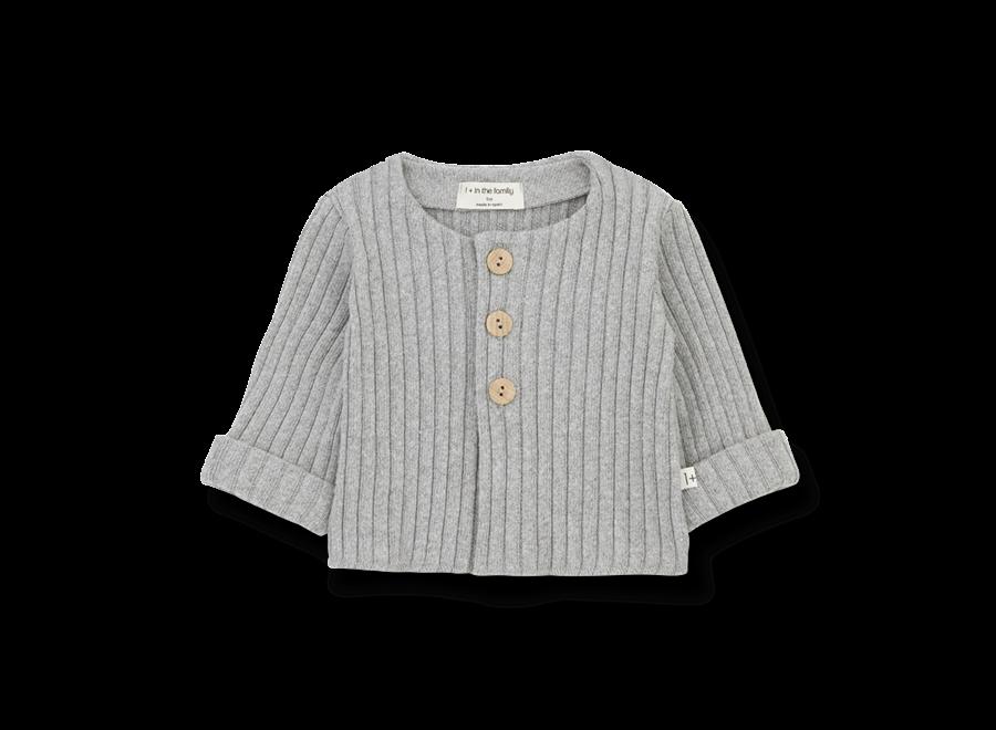 Violette nb jacket Grey