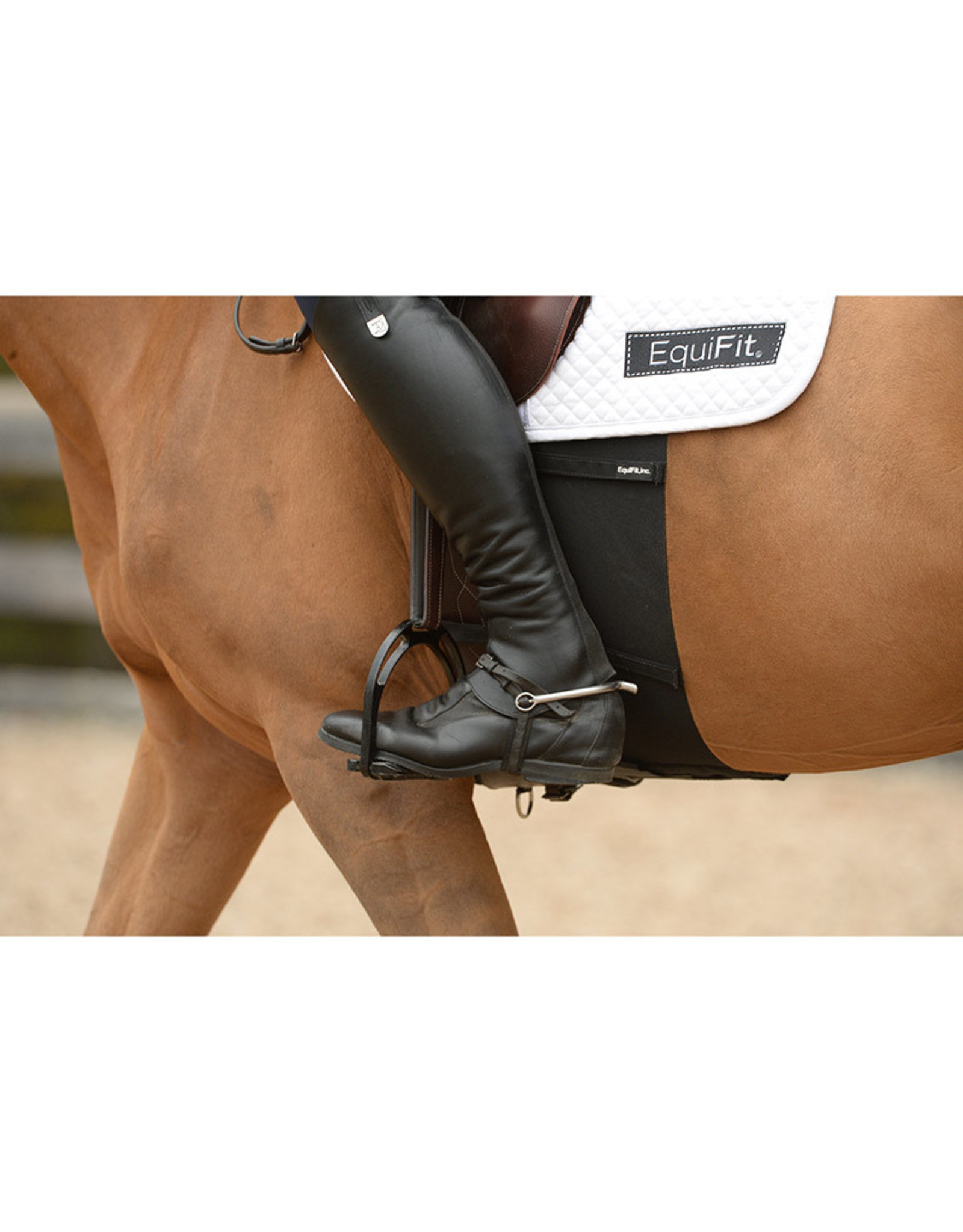 Equifit Equifit Bellyband