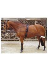 Harry's Horse Harry's Horse longeerhulpteugel