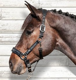 Equiline halster Timmy bruin
