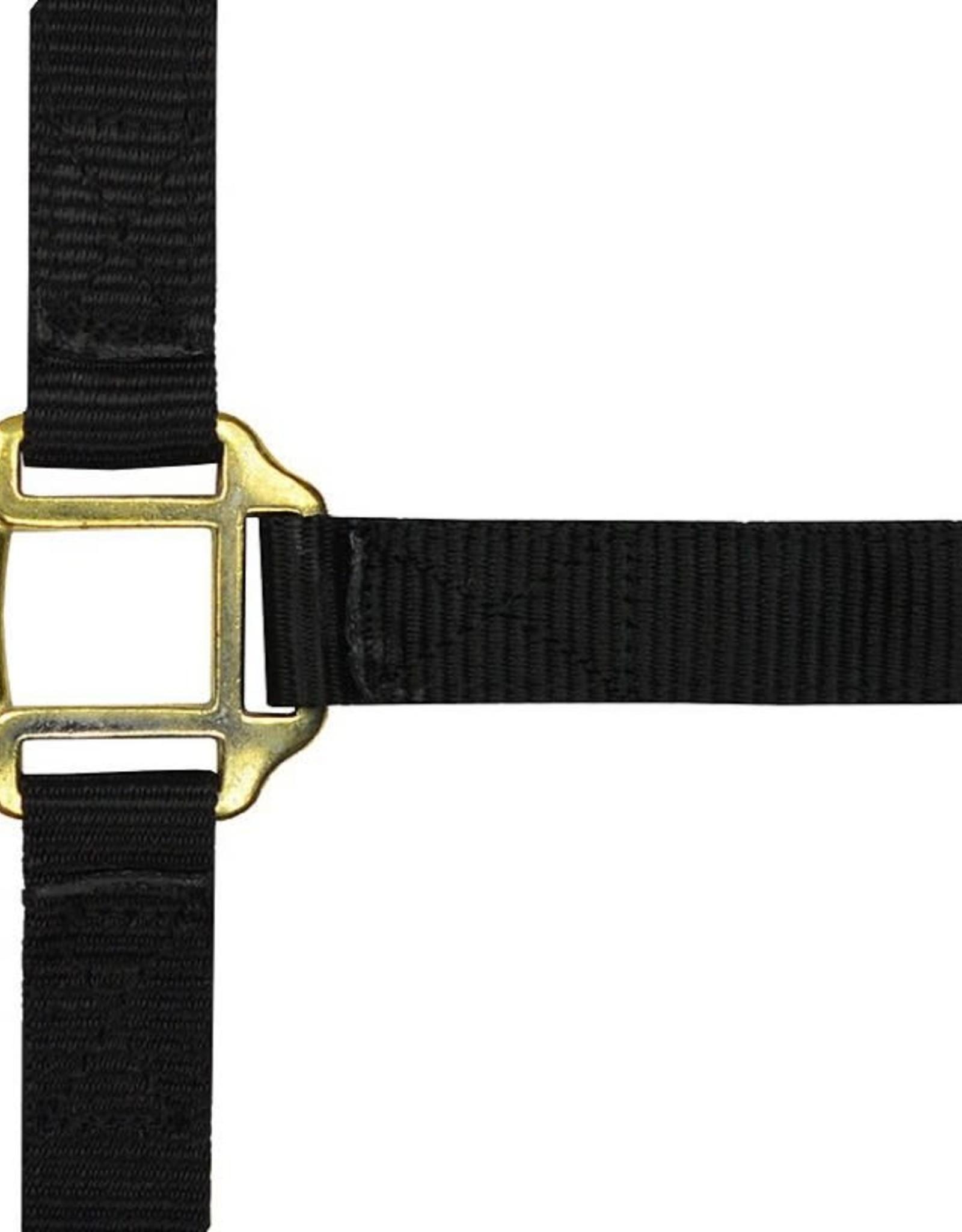 Norton EQUITM N. leder onderlegd nylon halster zwart