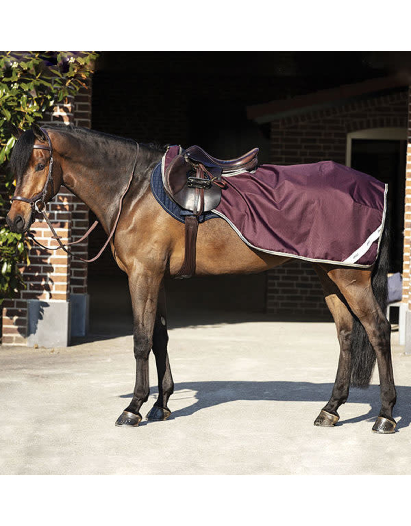 Horseware Amigo Ripstop Competition Sheet Fig/Navy & T