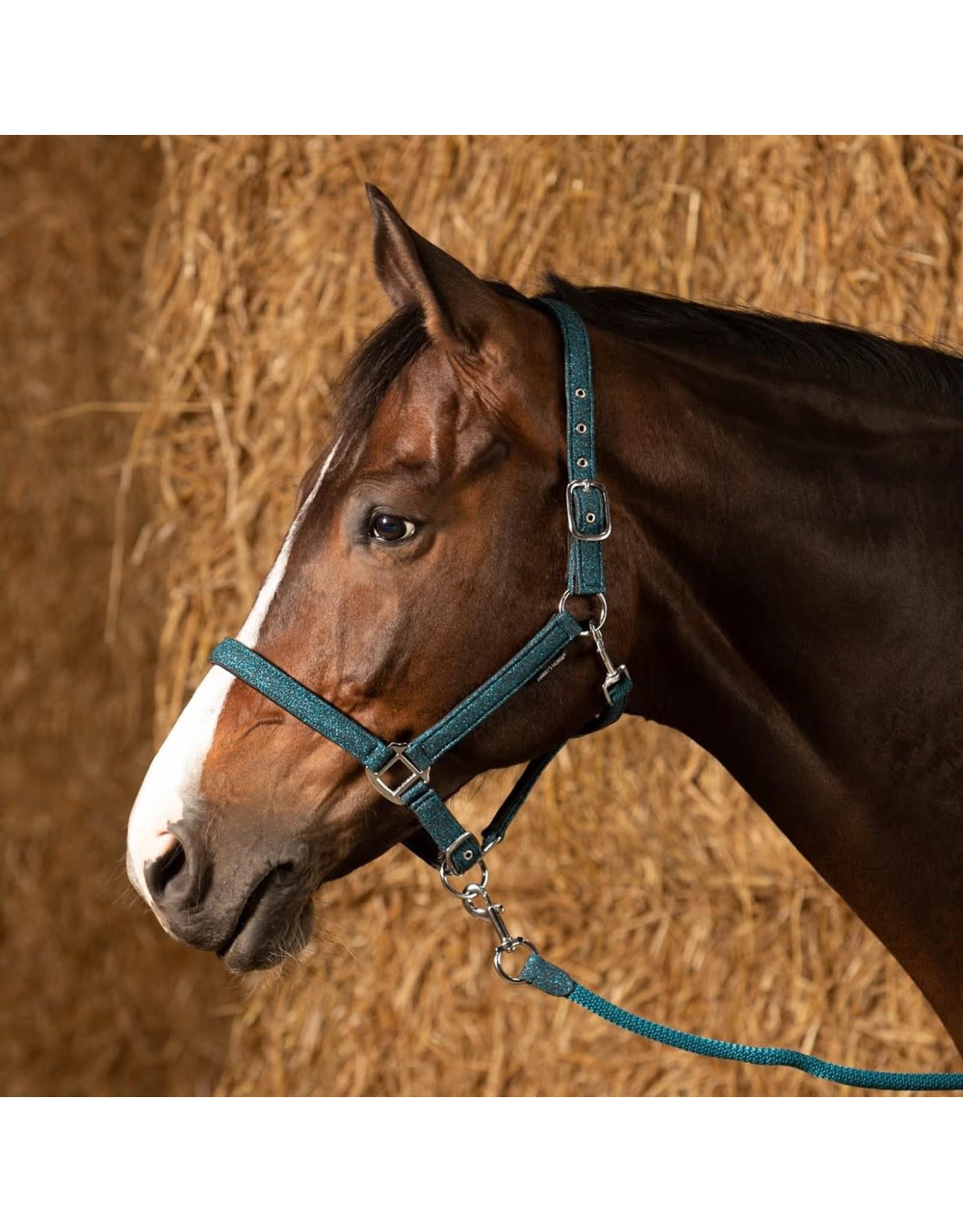 Harry's Horse HH Halsterset Glitter Teal