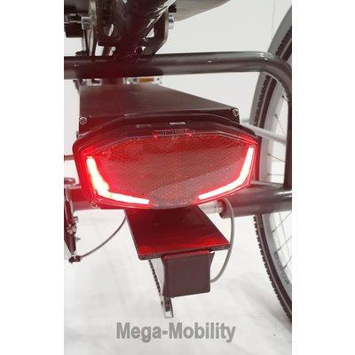 Tri-bike Y-Frame elektrische Driewielfiets Tri-bike (Model 2021)