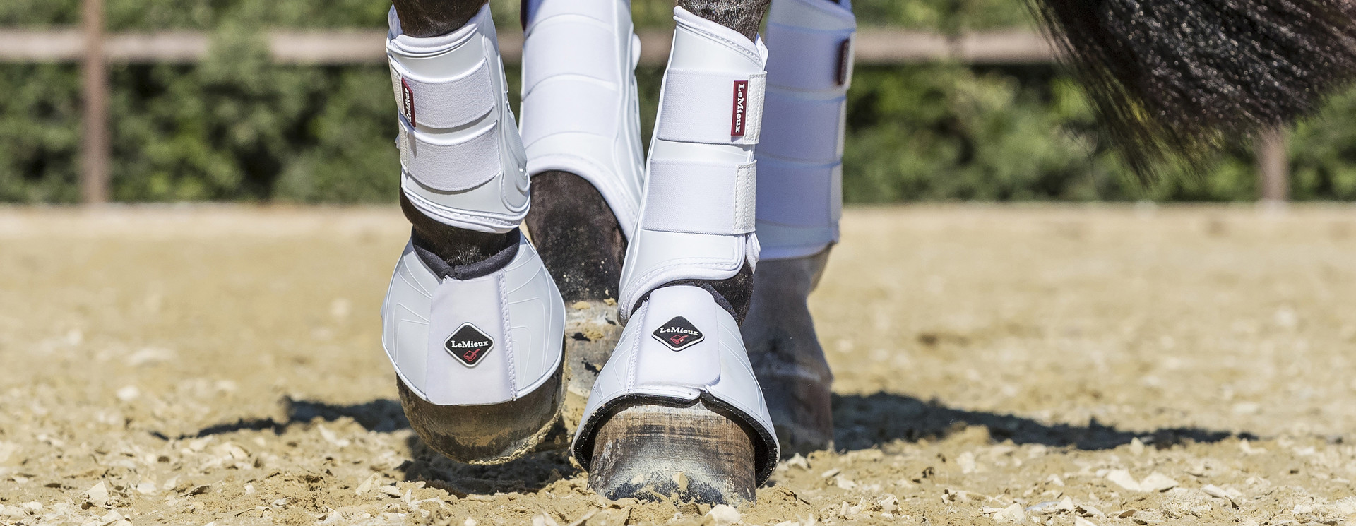 Brushing & Schooling Boots