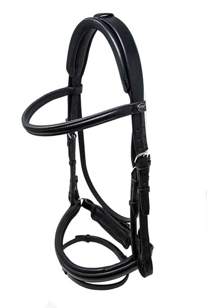 Aquarius Bridle