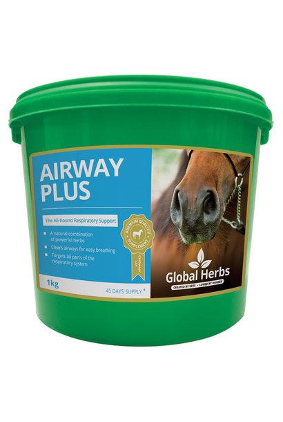 Airway Plus Powder 1kg