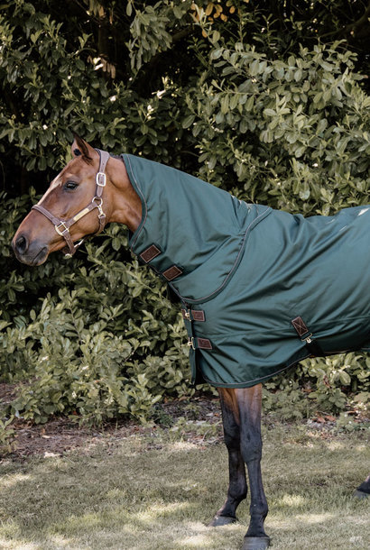 All Weather Turnout Rug 160g