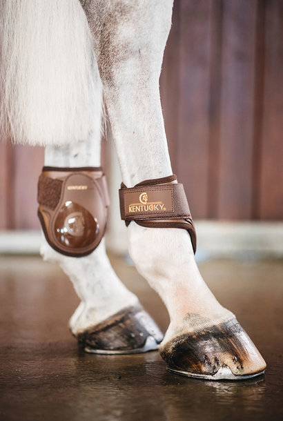 Young Horse Fetlock Boots