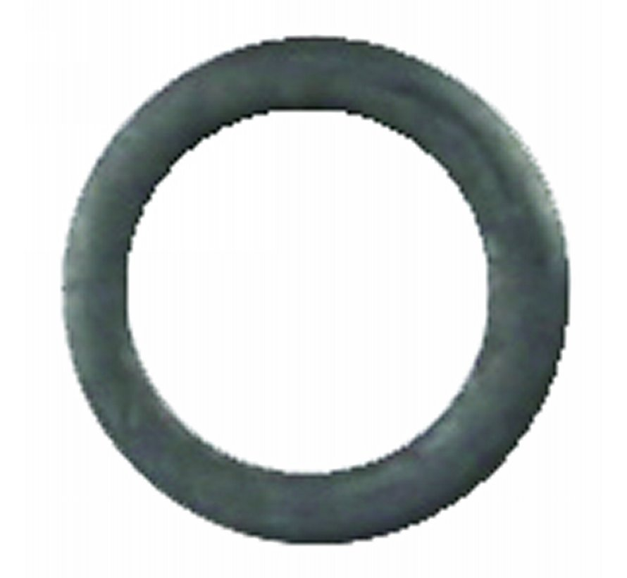 PV029 SS10 RIG RING