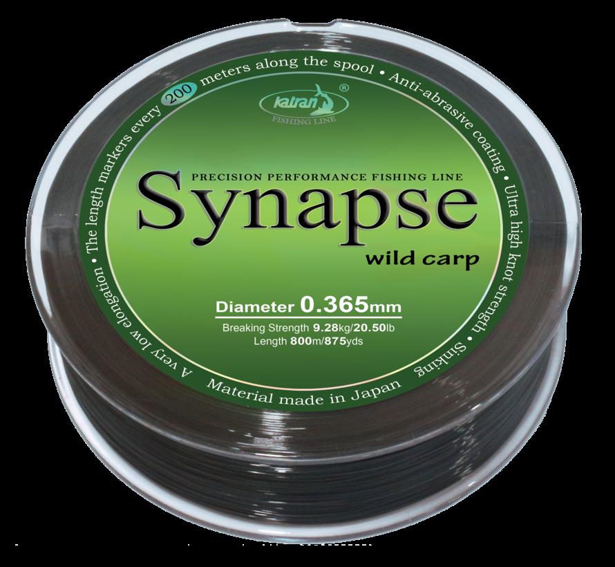Fishing Line SYNAPSE wild carp 0,365 mm | 9,28 kg | 800m