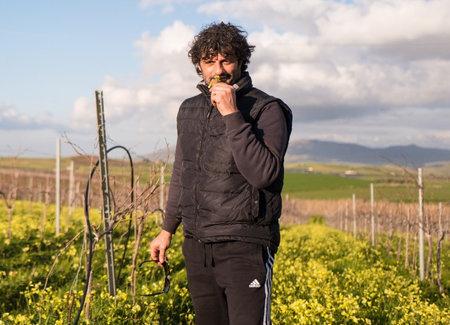 Alessandro Viola (Sicilia)