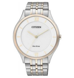Citizen Citizen AR0075-58A