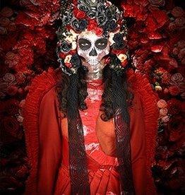 Cobra Art Cobra Art Photo Art On Plexiglas - Dia de muertos GN 7014