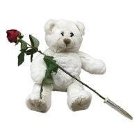 Met een roos