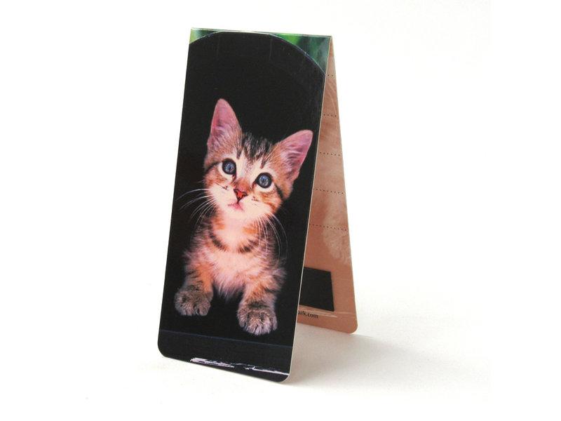 Magnetisches Lesezeichen, Kätzchen, schwarzer Hintergrund