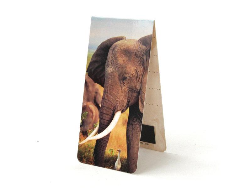 Marcador magnético, elefante africano