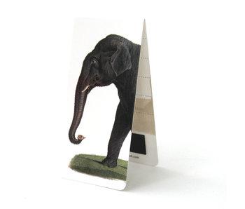 Magnetic Bookmark, Asian elephant , Illustration