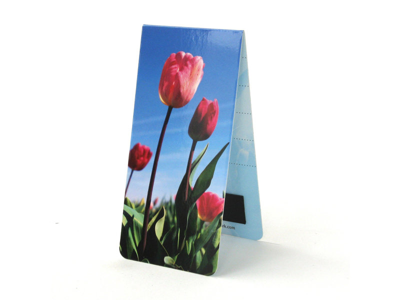 Magnetic Bookmark, Field of tulips Photo