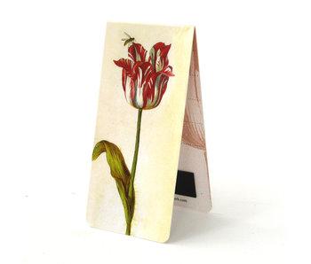 Marcador magnético, Jakob Marrel, tulipán rojo