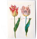 Doppelkarte, vier Tulpen mit Insekten, Marrel