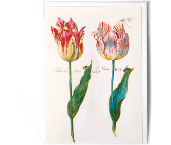 Card, Four Tulips and Insects, Marrel