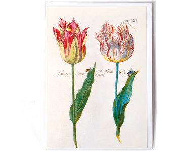 Doble tarjeta, Cuatro tulipanes con insectos, Marrel