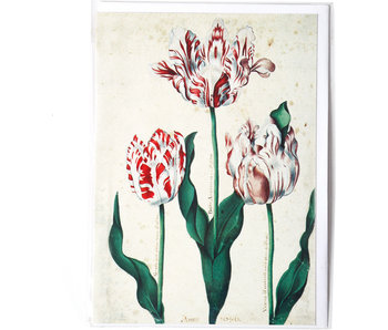 Doble tarjeta, Tres tulipanes, Artista desconocido