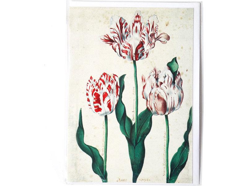 Double carte, Trois tulipes, Artiste inconnu