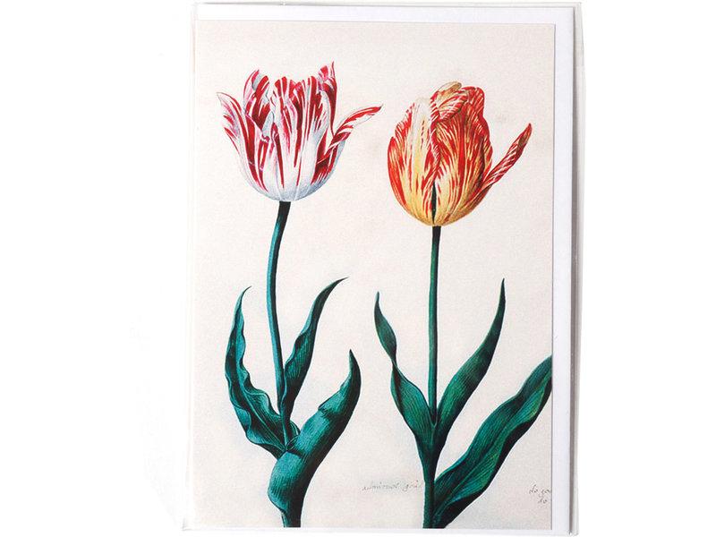 Dubbele kaart, Twee tulpen, Van Swanenburch