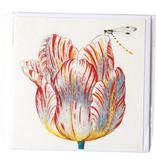 Doppelkarte, Weiß mit roter Tulpe mit Insekt, Marrel