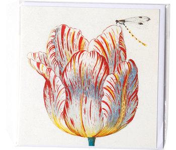 Doble tarjeta, blanco con tulipán rojo con insecto, Marrel