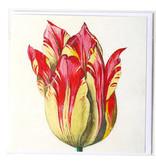 Doble tarjeta, amarillo con tulipán rojo, Marrel