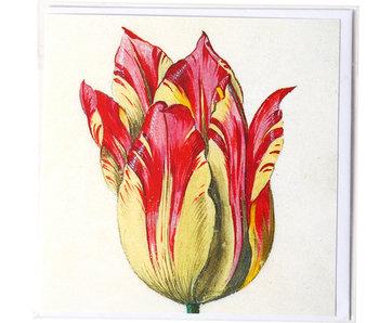 Doppelkarte, Gelb mit roter Tulpe, Marrel