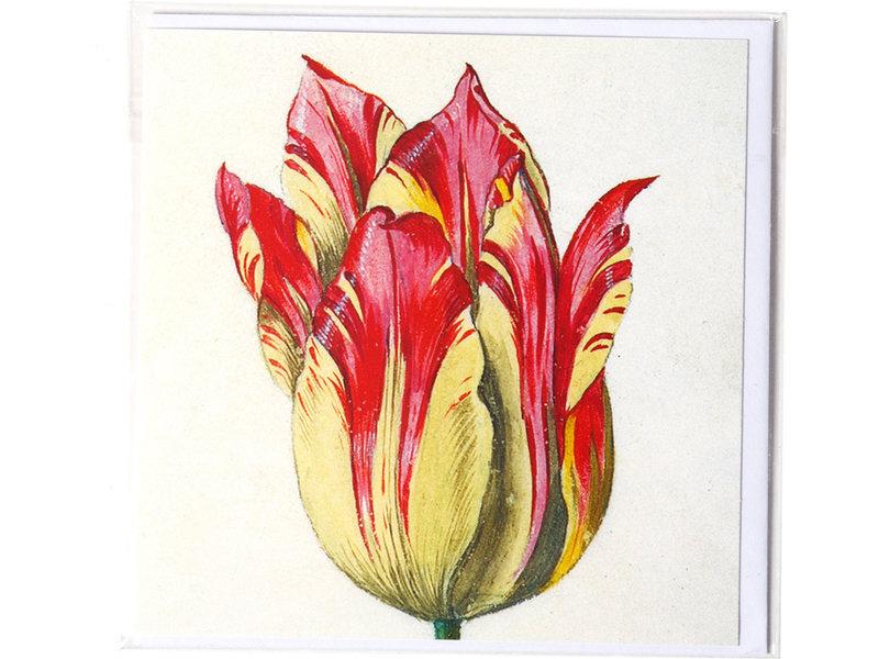 Dubbele kaart, Geel met rode tulp, Marrel