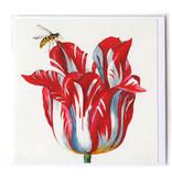 Doppelkarte, Weiß mit roter Tulpe mit Insekt (Biene), Marrel