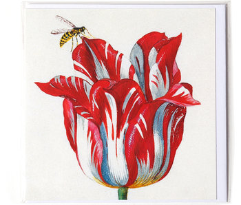 Dubbele kaart, Wit met rode tulp met insect (bij), Marrel