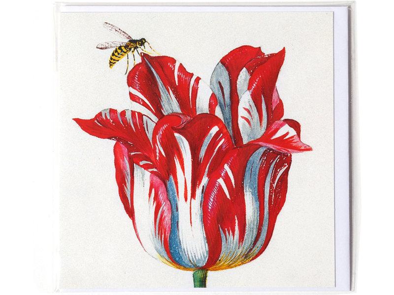 Doble tarjeta, blanco con tulipán rojo con insecto (abeja), Marrel