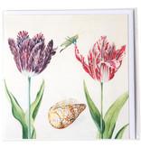 Doppelkarte, zwei Tulpen mit Muschel und Insekt (Grille), Marrel