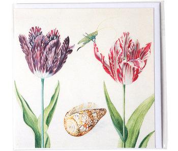 Doble tarjeta, Dos tulipanes con concha e insecto (grillo), Marrel