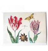 Dubbele kaart, Twee tulpen met schelp en vlinder, Marrel