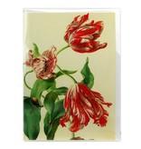 Card, Three Tulips, Henstenburgh