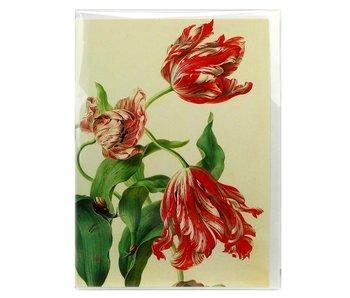 Doble tarjeta, tres tulipanes, Henstenburgh