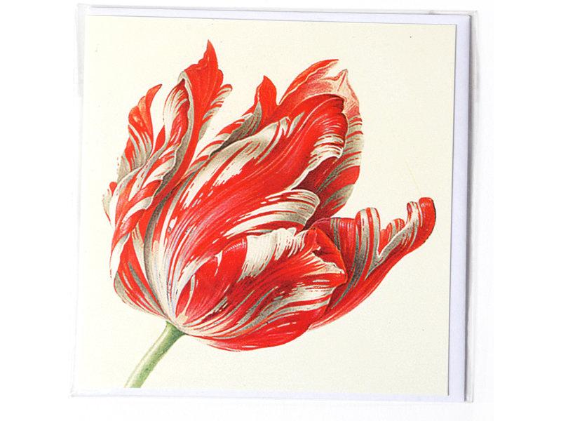 Doppelkarte, drei Tulpen (Detail), Henstenburgh