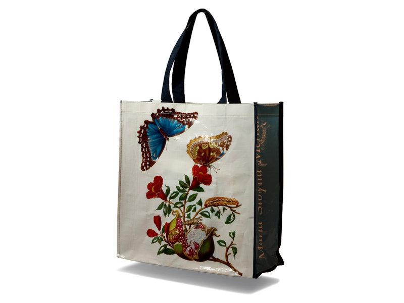 Shopper, vlinder, M.S. Merian (Teylers)