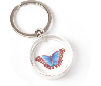 Keyring in giftbox, Butterfly, Merian