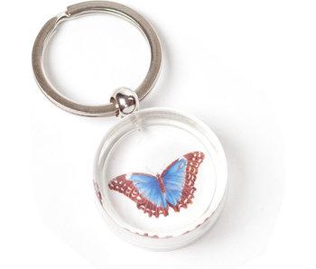 Schlüsselbund in giftbox, Butterfly, M.S. Merian